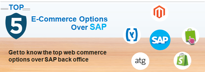 SAP e-commerce options