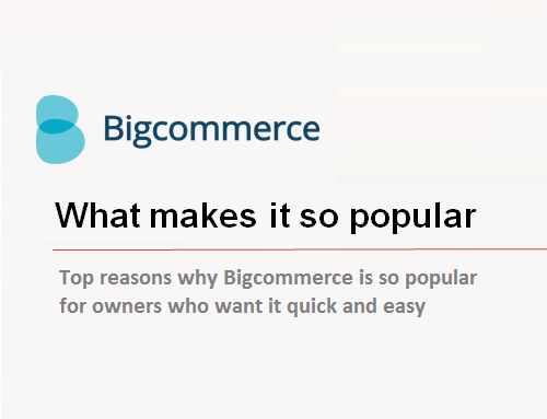 Top 4 Reasons why Bigcommerce is one of the leading e-store building tool