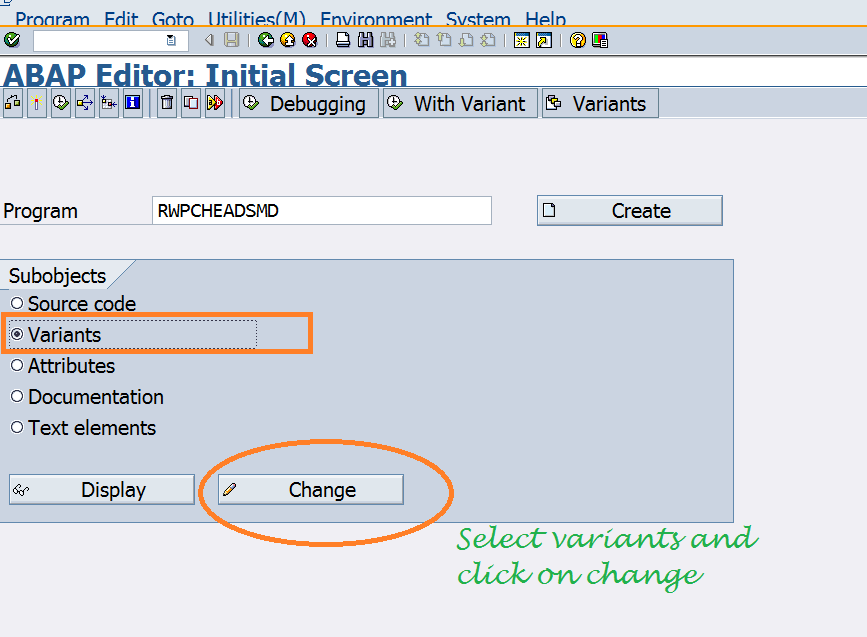 ABAP Program Variant selection