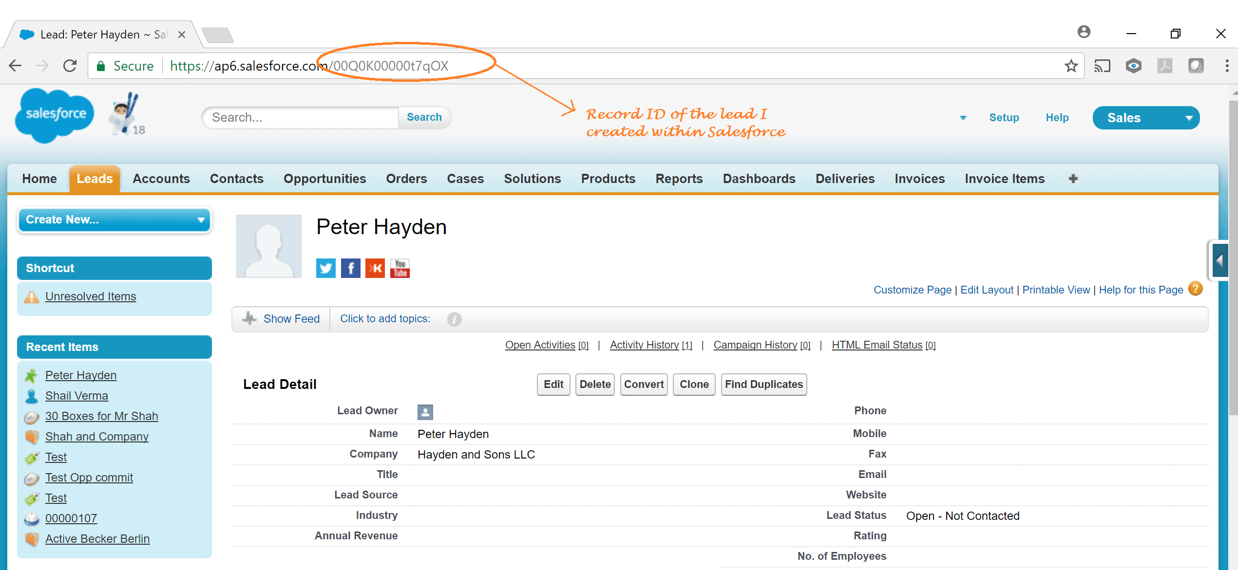 Lead records in salesforce