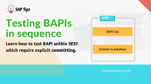 Testing Bapi in Sequence in SAP