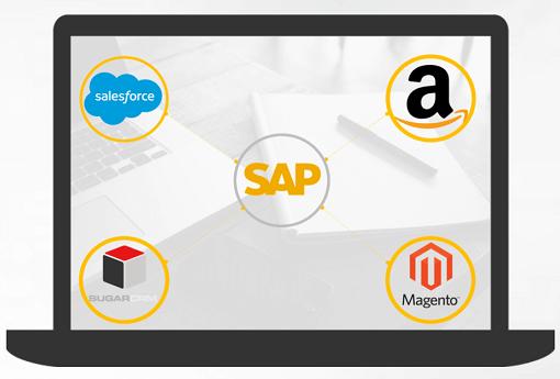 SAP Integration Banner Image