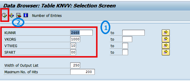 Enter customer number in KUNNR field