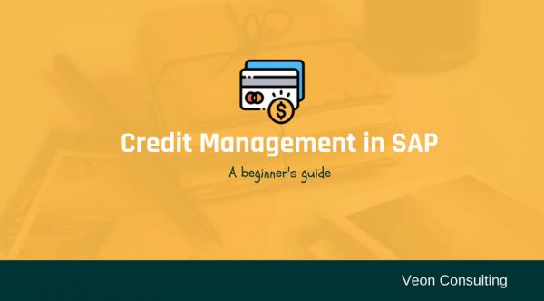 Configure Credit Management Wthin SAP Explain With Example