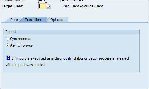 Screenshot of Synchronous Asynchronous option in SAP