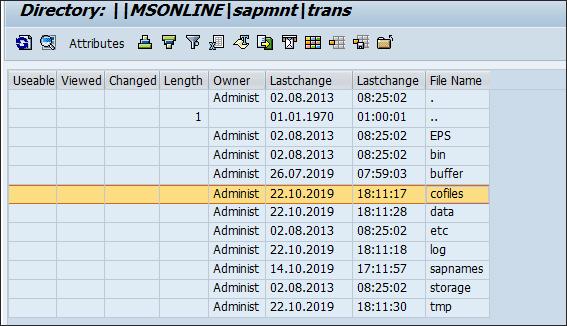 Screenshot of attributes files in SAP