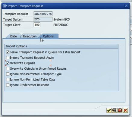 Screenshot of import Options in SAP